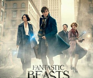 fantastic beasts, harry potter, and jk rowling image