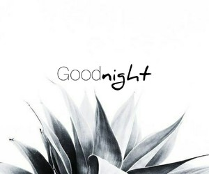 goodnight and quotes image