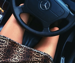leopard and mercedes image