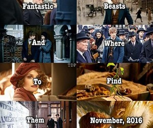 harry potter, hogwarts, and fantastic beasts image