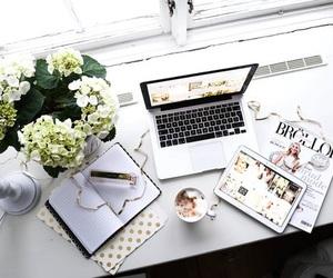 flowers, magazine, and white image