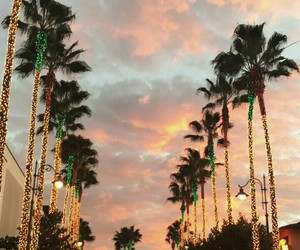 la, lovely, and palms image