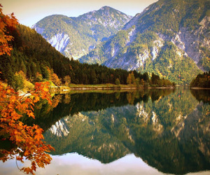 austria, forest, and mountain image