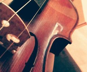 Dream, violin, and honey image