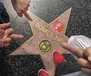 donald trump and star image