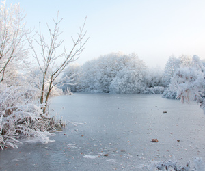 campus, ice, and pretty image