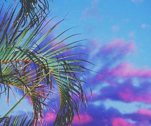glow, indie, and palm tree image