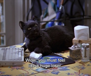 cat, salem, and loser image