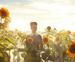 katy perry, prism, and flowers image