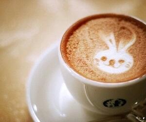 coffee, bunny, and rabbit image