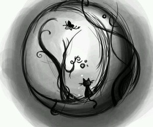 cat, moon, and black image