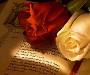 flowers, roses, and shakespeare image