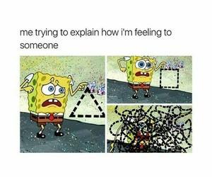 funny, meme, and feelings image