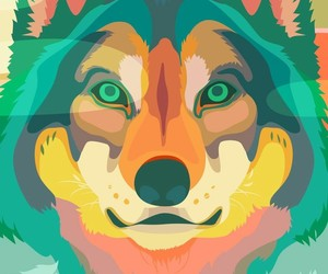 colors, wallpaper, and wolf image