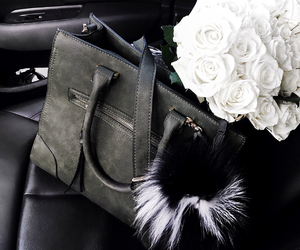 rose, bag, and car image