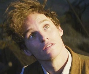 fantastic beasts, eddie redmayne, and newt scamander image