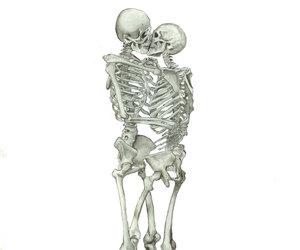 bones, etsy, and human anatomy image