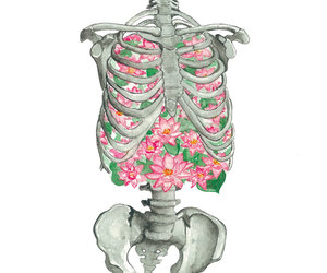 bones, ribs, and water lily image