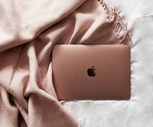 rose gold, apple, and aesthetic image