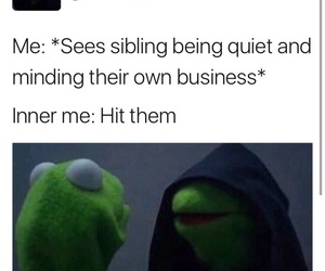 funny, memes, and siblings image