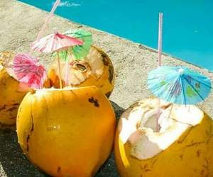 refreshing, summer, and coconutwater image