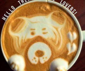 bear, coffee lovers, and coffee image
