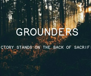 the 100 and grounders image