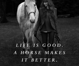 beautiful life, horse, and quotes image