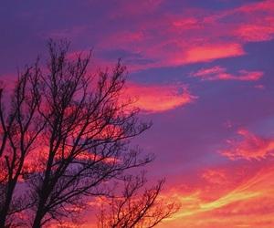 aesthetic, girl, and sunrise image