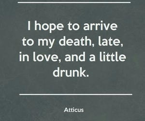 love, drunk, and life image