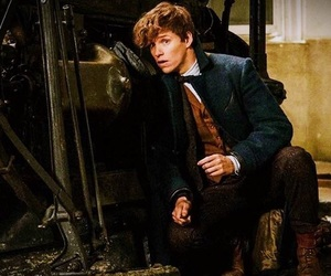 newt scamander, eddie redmayne, and harry potter image