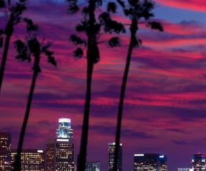 city, night, and palm trees image
