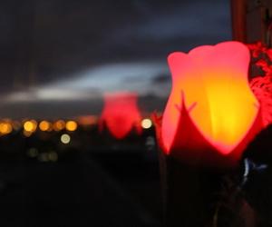 amor, luces, and espera image