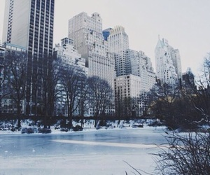 buildings, city, and ice image