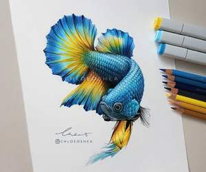 art, drawing, and fish image