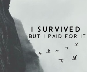 bird, survive, and paid image