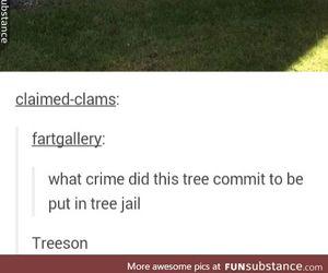 jail, treason, and funny tumblr post image