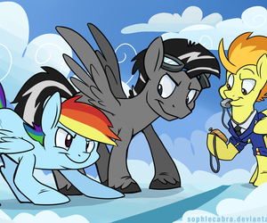 MLP, pegasus, and spitfire image