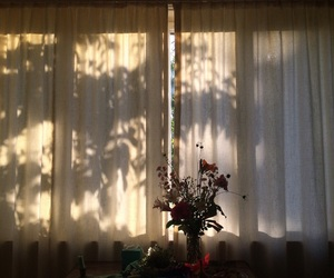 light, morning, and shadow image