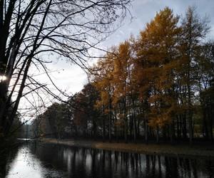 autumn, czech, and czech republic image