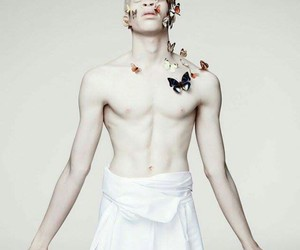 albinos, art, and photography image