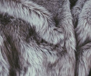 aesthetic, fur, and narnia image