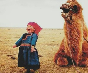 camel, funny, and kids image
