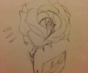 drawning, rose, and creatieve image