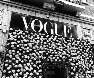 vogue, fashion, and flowers image
