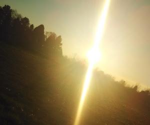 beautiful, nature, and sun image