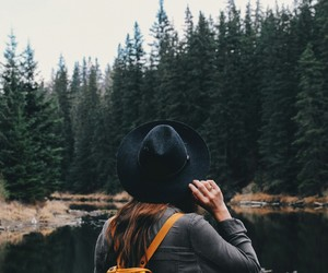 explore, travel, and forest image