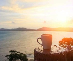 morning, sunsit, and cupof tea image