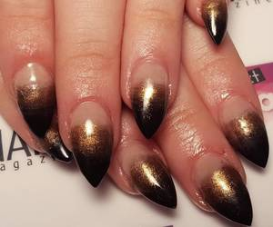 pointed nails image