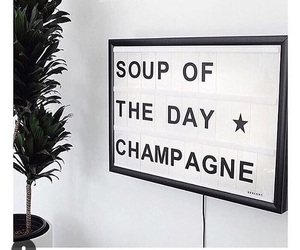 champagne, quote, and soup image